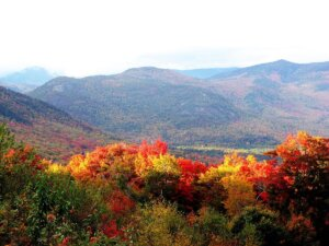 Picture of autumn foliage in New Hampshire