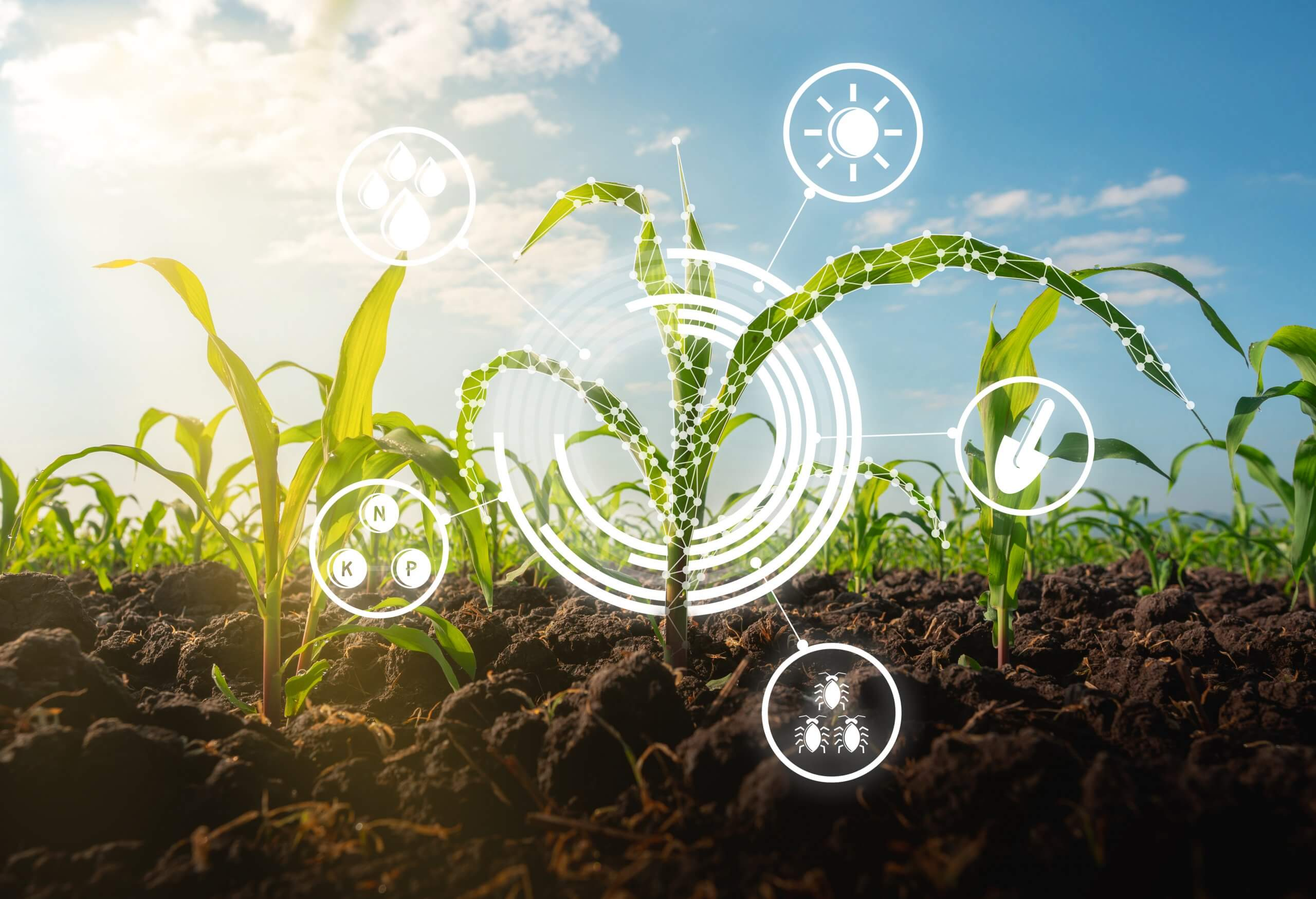 Sustainable Agriculture Technology